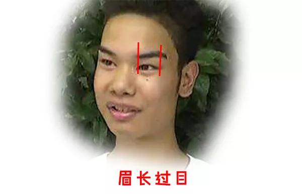 实例分析眉毛相理,如何从眉毛看一个人的性格!