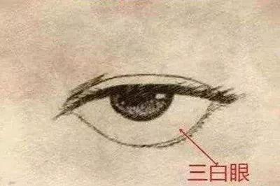 面相分析,心眼比较坏的人长什么样!