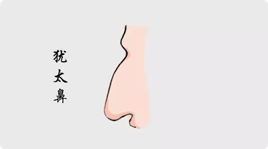 命中多福多贵的鼻相是什么样的?
