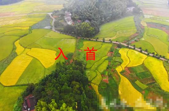 台湾马英九祖坟风水!