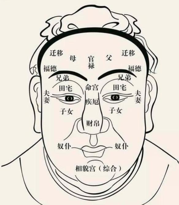 """《金篆玉函》玄学五术""""山、医、命、相、卜""""都讲了什么?"""