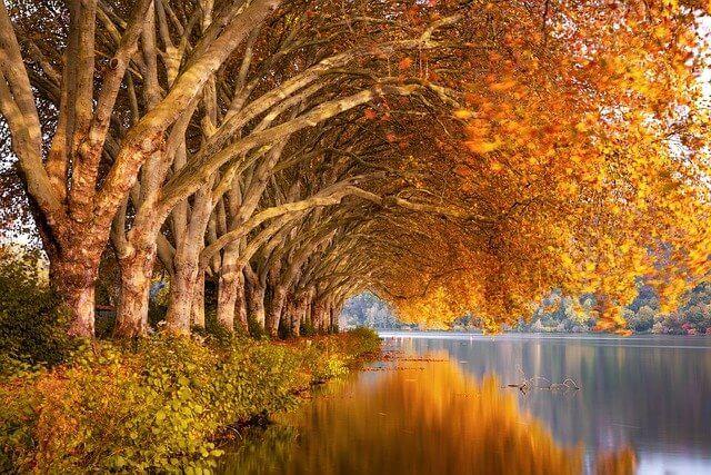 不同季节人的不同特性——秋季