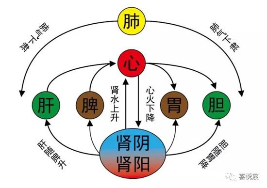命理学五行与中医学五行的差异